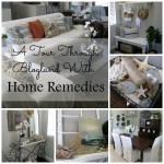 Tour Through Blogland at Home Remedies Rx.com
