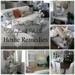 Tour Through Blogland at Home Remedies Rx.com