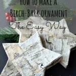 How To Make A Birch Bark Ornament - The Easy Way | Home Remedies Rx.com