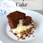 Earthquake Cake | Home Remedies