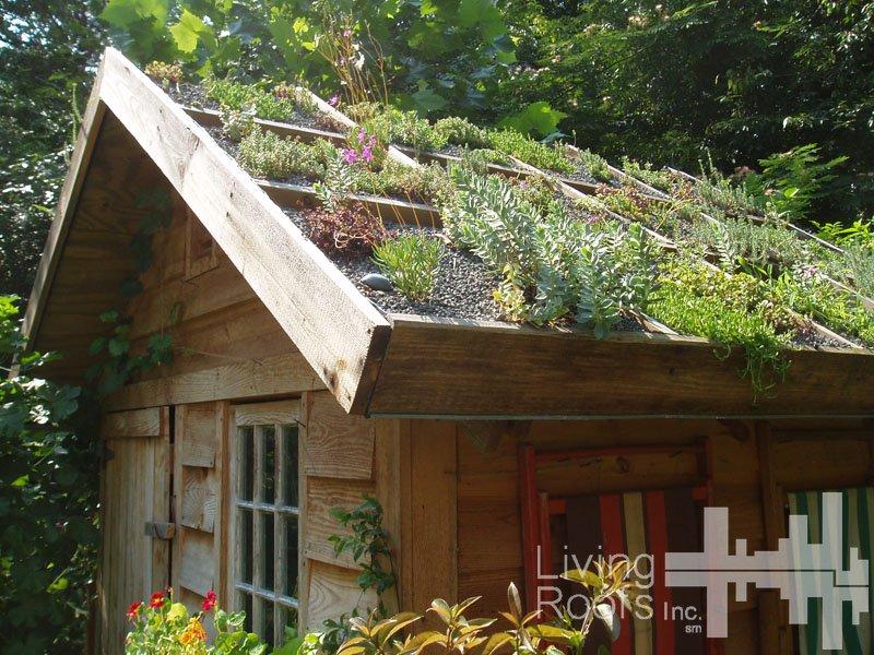 living-roofs-inc-copy