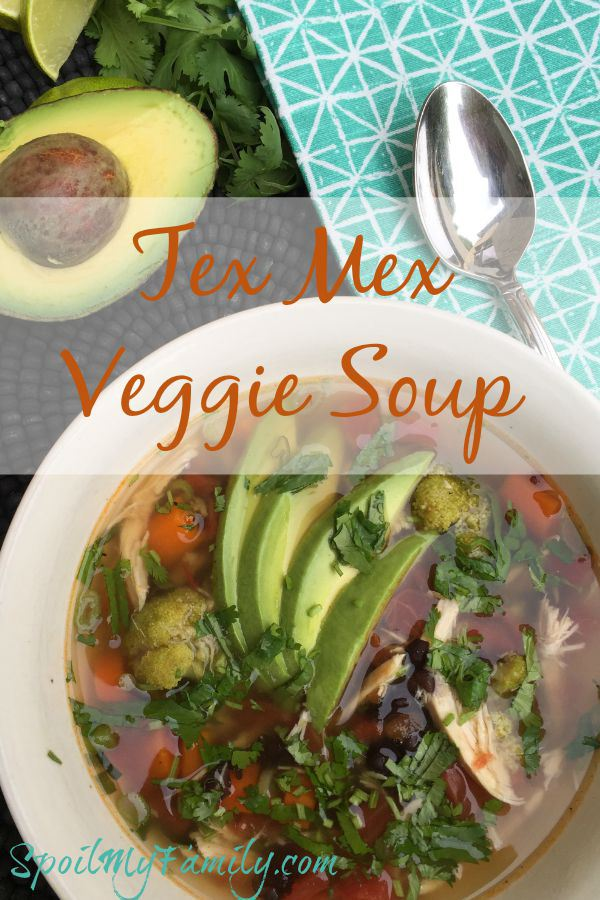 Tex-Mex Veggie Soup | Spoil My Family