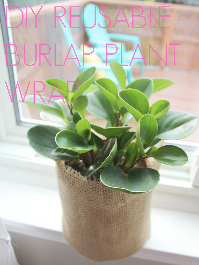 DIY Reusable Burlap Plant Wrap | White House Crafts