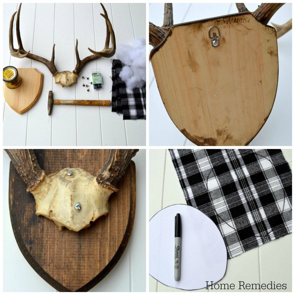 Antler Mounting Tutorial