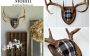 DIY Fabric Covered Antler Mount | HomeRemediesRx.com