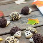 tt hedgehog-cookies