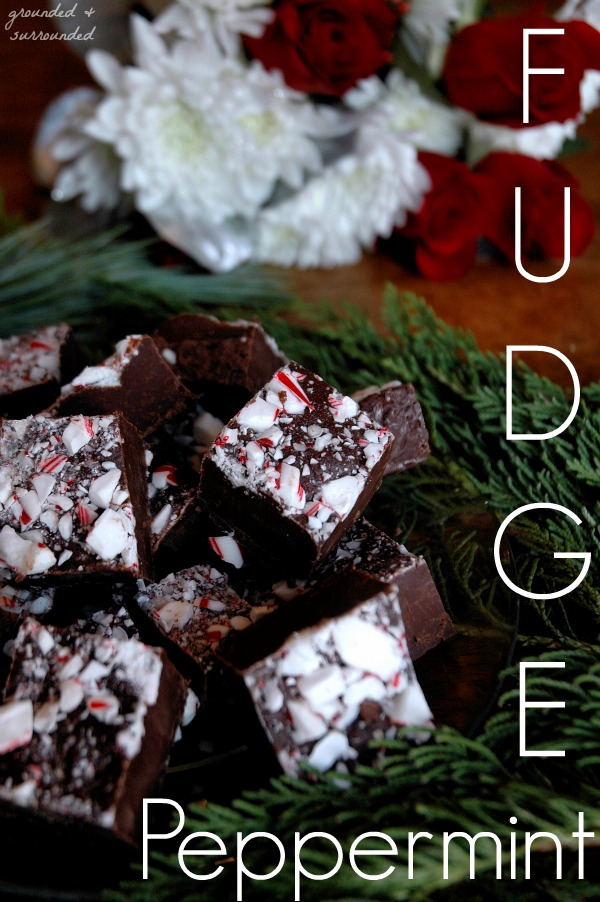 tt peppermint-fudge-pin