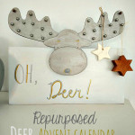 tt Repurposed-Deer-Advent-Calendar1