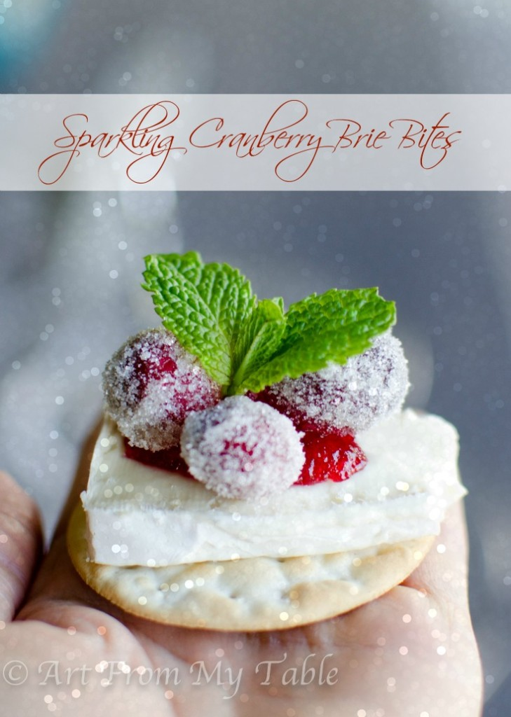 sparkling_cranberry_brie_bitespin-10